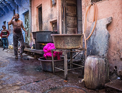 India (mokyphotography) Tags: india udaipur rajasthan people portrait persone picture ritratto canon street work lavoro men uomo travel color colori stoffa