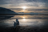 Beach (joshhansenmillenium) Tags: saltair salt lake city utah great mountains clouds travel water reflections nikon d5500 nikond5500 tamron 18200mm wildlife adobe