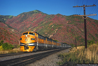 Color Ablaze in Spanish Fork Canyon