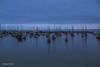 Harbor Night (buffdawgus) Tags: centralcalifornia montereycounty montereycoat montereybay lightroom6 harbor canonef24105mmf4lisusm topazsw california canon5dmarkiii monterey