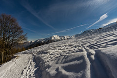 Snowy lines (andbog) Tags: sony alpha ilce a6000 sonya6000 emount mirrorless csc sonya landscape paesaggio sonyα sonyalpha italy italia piedmont piemonte to canavese mountain montagna shadow it sony⍺6000 sonyilce6000 sonyalpha6000 ⍺6000 ilce6000 snow neve alpi alps alpigraie natura nature ridgeline panorama manual mf manualfocus manualfocusing apsc primelens samyang samyang12mmf20ncscs 12mmf20 12mm f20 skitracks valleorco locana cialma