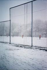 street. offside2018. lviv. (Yaroslav F.) Tags: football ball foot 35mm t5 yashica street futymskyi yaroslav lviv lvov winter rabitz trees tree