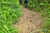 DSC_0009wtmk (Wilson Chin) Tags: borneoexplorer mountrawan rawan gunungrawan hiking mount wilson chin