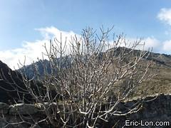Citadell Corte upper visit (33) (Eric Lon) Tags: corte corse corsica france citadelle fort panorama landscape paysage visit culture tourism ericlon