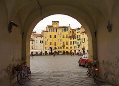 Lucca - Scorcio Piazza Anfiteatro (Darea62) Tags: lucca square town tuscany bikes anfiteatro toscana borgo ancient history buildings circus pavement architecture arch renaissance