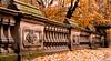 Bridge (CFD Images) Tags: bridge central park new york city big apple manhattan leaves autumn