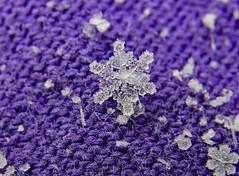 Icy Snowflake (BKHagar *Kim*) Tags: bkhagar snow snowflake macro cold snowing icy limestonecounty al alabama athens firstsnowof2018