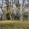 Last Autumn Days (Koprek) Tags: rolleiflex28f kodak portra 160 čakovec medium format film november 2017