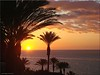 Fuerteventura - Sonnenaufgang (sunrise) (Jorbasa) Tags: sunrise sonnenaufgang jandia jorbas hessen wetterau germany deutschland geotag sonne sun fuerteventura insel island kanarischeinsel atlantischerozean palmen plant palmtree tree baum vegetation canarias spain
