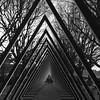 IMG_5983 (Kathi Huidobro) Tags: geometric lighttunnel blackwhite bw pyramid triangles contrasts monochrome london southbank interactiveart lightsculpture lightinstallation artinstallation lightart lumiere