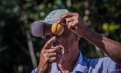 2017 - Regent Cruise - Grenada - Nutmeg & Mace (Ted's photos - Returns 23 Jun) Tags: 2017 cropped grenada nikon nikond750 nikonfx regentcruise stgeorge's tedmcgrath tedsphotos vignetting mtgazo nutmeg mace bokeh pointing hand ballcap
