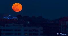 Superluna alumbrando la ciudad (T. Dosuna) Tags: tdosuna d7100 fotografíanocturna castillaleon valladolid españa spain