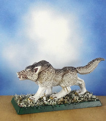 Arctic-Dire-Winter-Wolf-Painted-Miniature-02 (Dead Bard Miniatures) Tags: dd dungeons dragons reaper ralpartha grenadier warhammer wotc chainmail pathfinder painted miniature mini