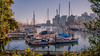 Tranquil Morning View (Sworldguy) Tags: stanleypark vancouver fall harbour coalharbour coastal port framed calm morning misty d7000 dslr nikon landscape scenery sailboat marina