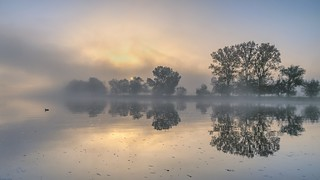 *morning at the river @ lonely duck*