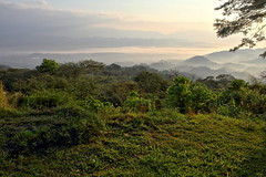 A beautiful view in the early morning (Chemose) Tags: mexico mexique chiapas vue view landscape brume mist tree arbre vallée valley morning matin hdr canon eos 7d mars march forêt forest
