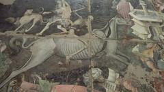 """""""Trionfo della morte"""", dettaglio (Palermo, Galleria Regionale della Sicilia a Palazzo Abatellis) (marcocass) Tags: sicilia sicily affresco pittura painting fresco art arte medievale medieval"""