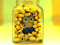 Minion in der Flasche (ingrid eulenfan) Tags: macromondays makro macro minion flasche pillen inabottle bottle gelb yello