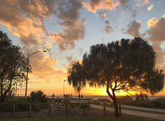 Summer night in Melbourne (Marian Pollock) Tags: australia victoria sunset sunshine silhouette brighton clouds tree people melbourne paths dusk summer portphillipbay pier sea water bikepath bay atmospheric magic iphone cloud