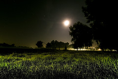 Overgrown countryside in the Moonlight (Andrew Myatt Photo) Tags: nocturnalphotography landscapes field countrylife construction