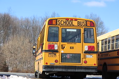 First Student #831 (ThoseGuys119) Tags: firststudentinc schoolbus pinebushny thomasbuilt dslr canon eos77d winter sunlight beautiful snow