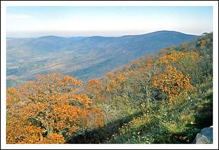 Blue Ridge Autumn From Skyline Drive - 1968