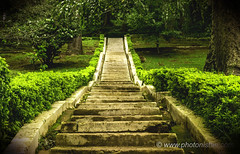 Ascend - Stairs of Hope !! (Photonistan) Tags: stairs ascending rising motivation photonistan nikon d7100 photography message inspiration motive garden grass