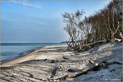 Am Weststrand vom Darss (der bischheimer) Tags: darss weststrand ostsee baltic sand wasser canon derbischheimer