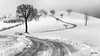 Neve sulle colline di San Severino Marche (Luigi Alesi) Tags: sanseverino italia italy marche macerata san severino gaglianvecchio paesaggio landscape scenery collina hill inverno winter neve snow strada way road bianco e nero black white alberi trees natura nature nikon d750 raw