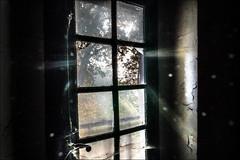 Pénétrer par effraction.../ Break in... (vedebe) Tags: couleurs fenêtre abandonné decay rayons soleil urbex
