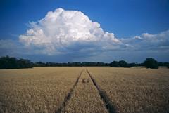 (xbacksteinx) Tags: chinonmemotronceii m42 analog slr ennamünchenlithagon24mmf4 24mm dmparadiesdia100 kodak e6 slidefilm summer thunder clouds mood moody
