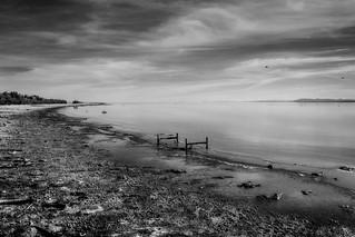 salton sea shoreline, north shore