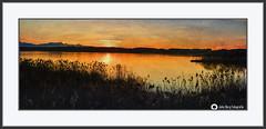 Sonnenuntergang in Seebruck am Chiemsee (john_berg5) Tags: sunset lake chiemsee chiemgau bavaria color nikond750 nature landscape germany