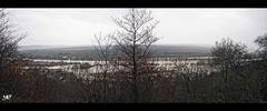 la crue - La Roche Guyon DxOFP Pano 61-62LM+35 (mich53 - thank you for your comments and 4M view) Tags: îledefrance panorama france river overflow inondation leicamtype240 summiluxm35mmf14asph pluie raindrops rain larocheguyon pay 4winter saisons télémètre rangefinder rien valdoise seine arbres 2018