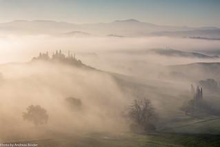 Belvedere | Morgenebel
