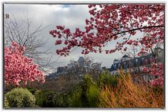 Colourful city (Daniel_Hache) Tags: 12e hiver paris soleil winter february fevrier promenade walk coulee verte allfreepicturesfebruary2018challenge canon eos 550d sigma 1770