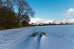 In-between (scottprice16) Tags: england lancashire clitheroe hills southpennines pendlehill snow sky blue showers wind spindrift shapes light colour trees landscape view afternoon outdoors winter spring february 2018 canon sigma canoneos7d sigma1750mmf28os