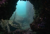 20171202-DSC_4148.jpg (d3_plus) Tags: landscape underwater 三浦 三浦半島 fish port apnea nikon1 晴れ 1030mm zoomlense sea 風景 j4 scenery 自然 景色 空 ニコン1 wpn3 miurapeninsula sky skindiving ニコン マリンスポーツ japan miura 広角 コン 魚 nikonwpn3 nikon 神奈川県 水中 ウォータープルーフケース superwideangle nikkor 超広角 スキンダイビング nikon1j4 漁港 素潜り 海 snorkeling drive nikond700 地形 diving 息こらえ潜水 ズーム nature 1030mmpd watersports shizuoka 日本 1nikkorvr1030mmf3556pdzoom waterproofcase シュノーケリング marinesports
