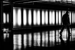 (andersåkerblom) Tags: walking man streetphotography streetphoto monochrome blackandwhite bw bnw