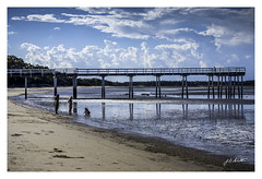 """""""If you build it, they will come"""". (TOXTETH L8) Tags: scarness herveybay queensland australia fishing baseball hightide fish tourists"""