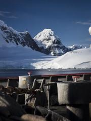"""Guardian at the gate"" - Borgen Bay, Antarctic Peninsula (alejandro.romangonzalez) Tags: antarctica antarcticpeninsula britishantarcticsurvey bas rrsjamesclarkross landscape research outdoors mountains snow ice glacier southernocean"