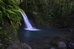 La Cascade aux Ecrevisses (Thierry.Vaye) Tags: eau water gwada guadeloupe antilles rochers pierres cascade écrevisses