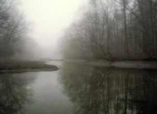 The Estuary at Audubon Tract