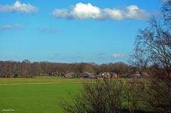 Landscape Forest (JaapCom) Tags: jaapcom landscape landschaft landed trees clouds wezep dutchnetherlands holland nature natural outdoor nikond5100 nikkor