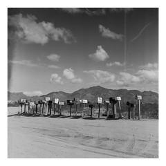 Pierce Ferry Rd, Arizona (mrnalepa) Tags: mediumformat yashica mat124 analog analogisnotdead ilford hp5 kodak d76 blackandwhie nevada arizona califorania unitedstates desert landcape beautiful trip selfdeveloped