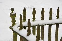 OldColdSteel (Tony Tooth) Tags: nikon d7100 tamron 2470mm railings iron steel wroughtiron snow cold leek staffs staffordshire