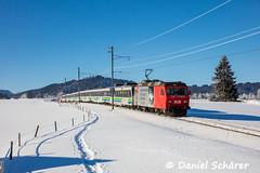 Re 456 095 / Bibergrugg (Daniel Schärer) Tags: daniel schärer sob sattel altmatt biberbrugg schnee zugimschnee gebirgsstrecke voralpenexpress vae re456 re456095 jubiläumswerbung werbelok