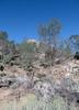 Ridgecrest_2017 118 (dever_brett) Tags: california ridgecrest desert nissansentra