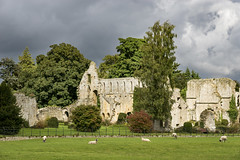 Jervaulx Abbey (Keartona) Tags: jervaulx abbey northyorkshire england old ruins ruined architecture history stone building picturesque