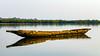 (Conscious Scofield) Tags: quinhamel canoa bissau guinea guine river rio fisherman oyster oysters ostra pescador